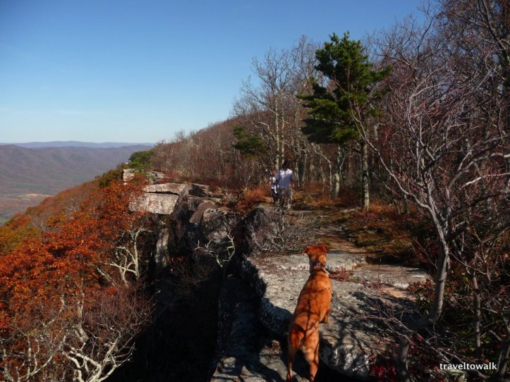 This was the first time on these cliffs in the fall of 2011. We ran a shuttle and hiked the 12 mile stretch from Andy Layne to Tinker Cliff to McAfee. Thanks to Drew and Christen for first introducing me to the hikes here.