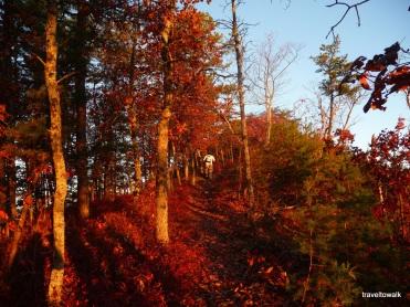 2011 on the ridge of Tinker Mountain