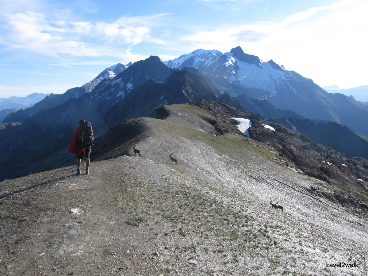 trip report: Tour du Mont Blanc, July 2011