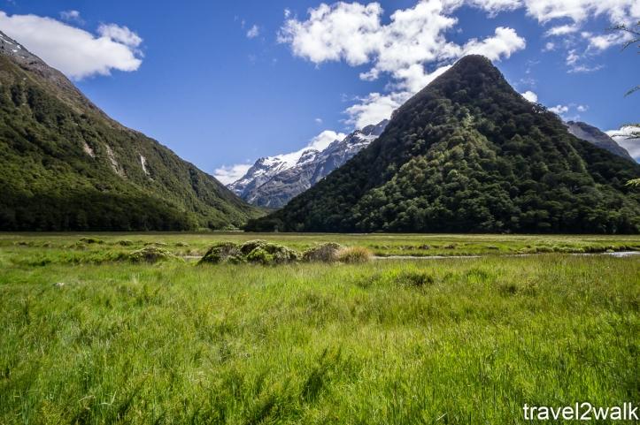 16_12_NZ2-11