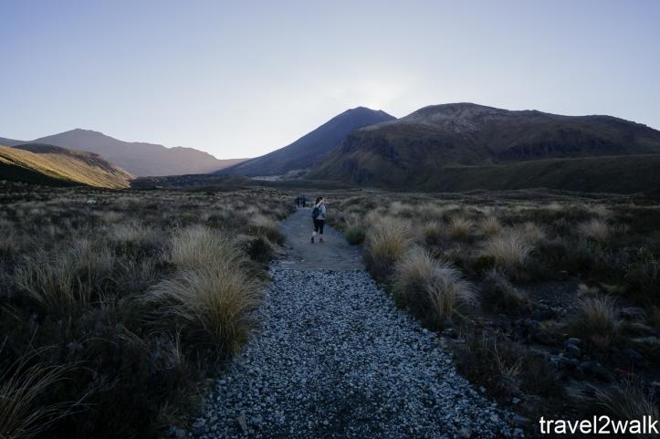 16_12_NZ2-112