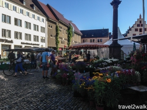 market in downtown Freiburg