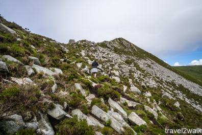 2017_6_ireland (156 of 411)