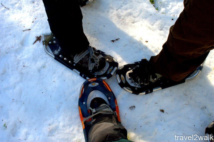 footwear-1-3