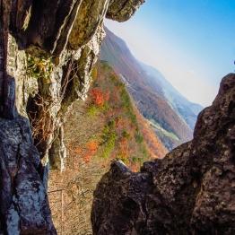 peak foilage on October 29, 2011