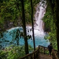 trip report: Costa Rica, December 2017
