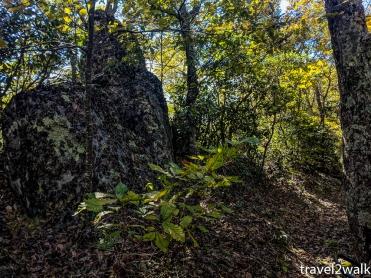 18_10_21_Terrapin_Mountain-10