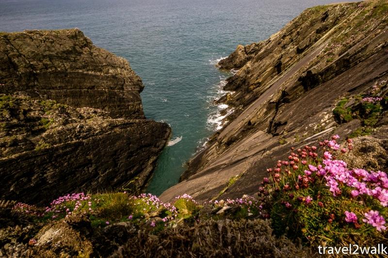 18_5_Wales-1140