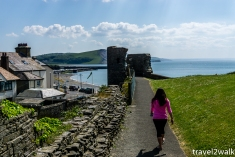 18_5_Wales-1264