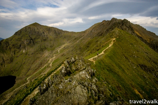 18_5_Wales-1346