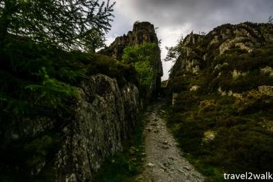 18_5_Wales-1423