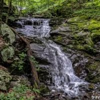 virginia hikes: Overall Run & Beecher Ridge loop, July 5 2019