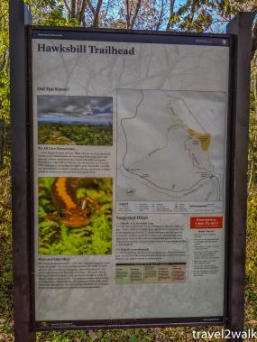 19_10_15_Hawksbill-32