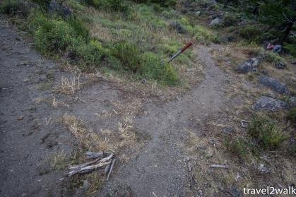 side trail to Campamento Bahia de los Témpanos