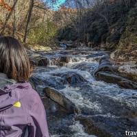 virginia hikes: Bottom Creek Gorge loop, November 3 2019
