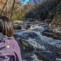 virginia hikes: Bottom Creek Gorge loop, November 3 2019