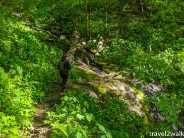 one of the seasonal stream crossings along the way